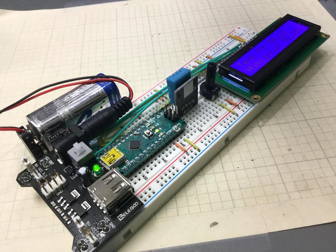 portable temperature sensor